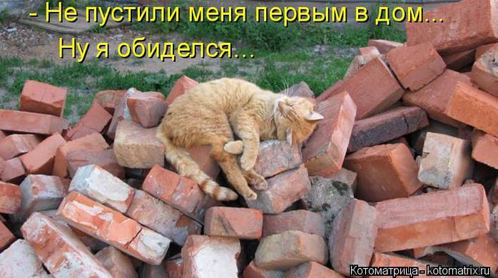 kotomatritsa_yF (700x390, 59Kb)