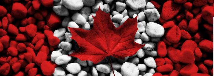 учеба в канаде/3185107_obychenie_v_kanade (700x251, 140Kb)