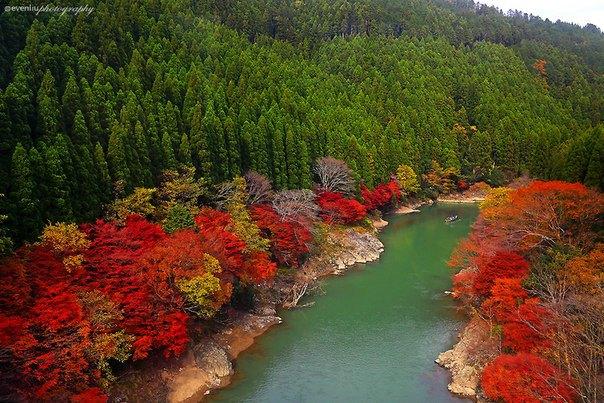 Arashiyama, Киото, Япония (604x403, 93Kb)
