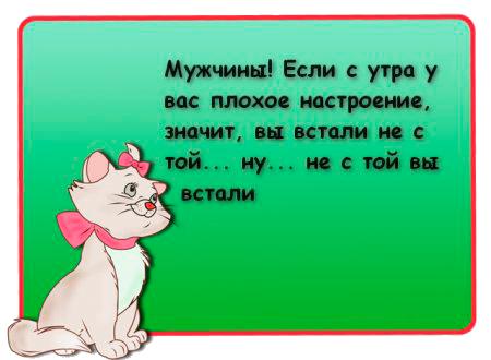 3676362_10348870_507a5a37_1_ (450x330, 123Kb)