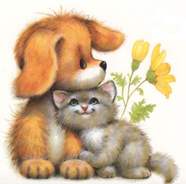 Cat & Dog (601x596, 61Kb)