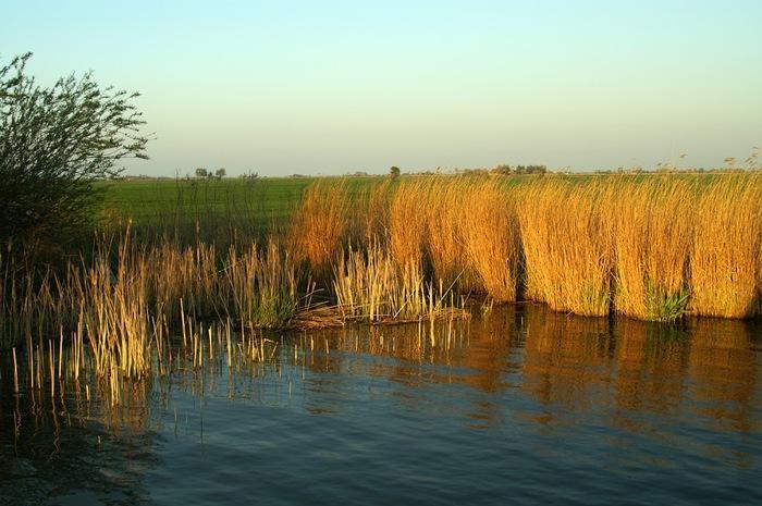 Фрисландия - часть 1. 16087
