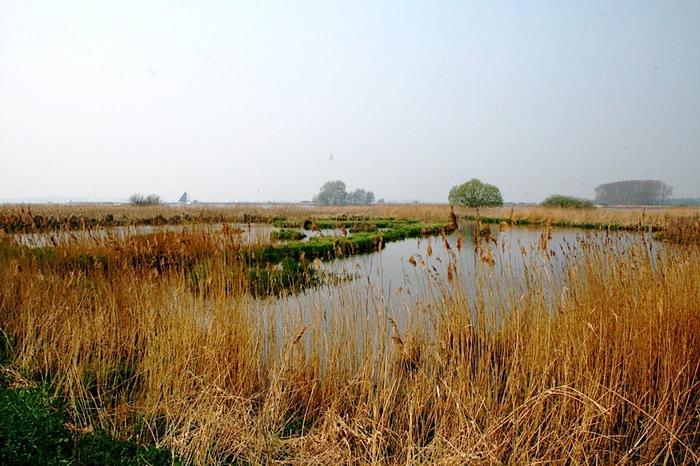 Фрисландия - часть 1. 91434