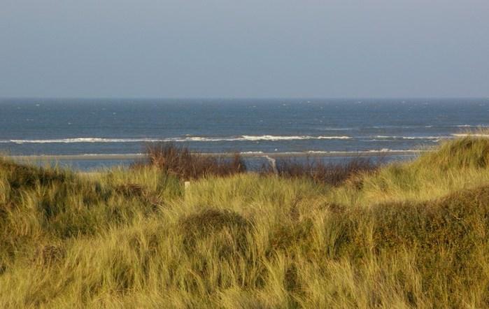 Фрисландия - часть 1. 87751