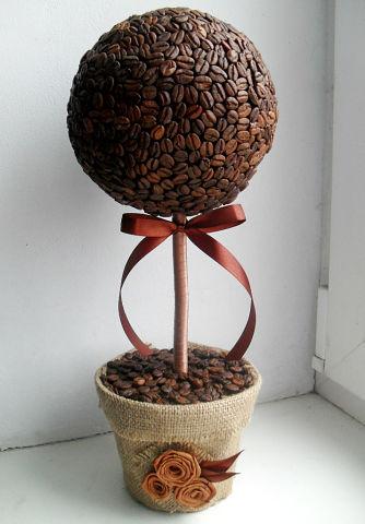 Кофейных деревья своими руками фото