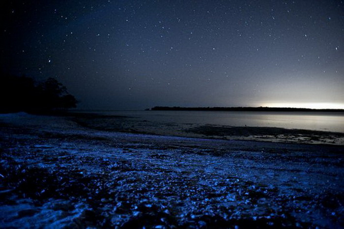 море на мальдивах3 (700x465, 103Kb)