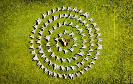 Уилл и Каро. Инсталляции из бумажных бабочек-оригами
