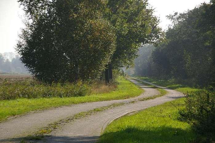 Фрисландия - часть 1. 46930