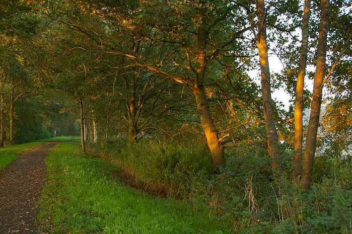 Фрисландия - часть 1. 10631