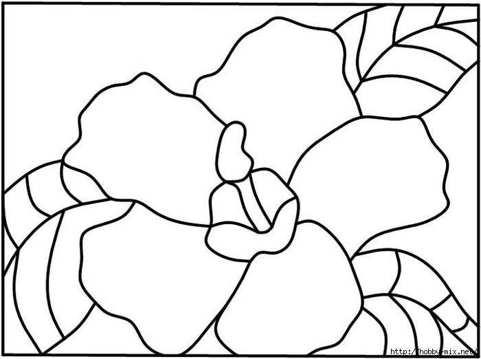 4hibiscus1 (700x522, 110Kb)
