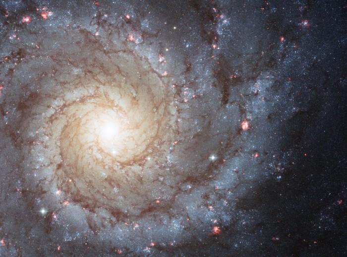 m74-galatika (700x518, 115Kb)