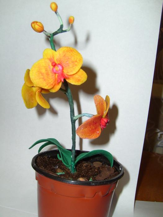 Орхидея из пластилина как сделать