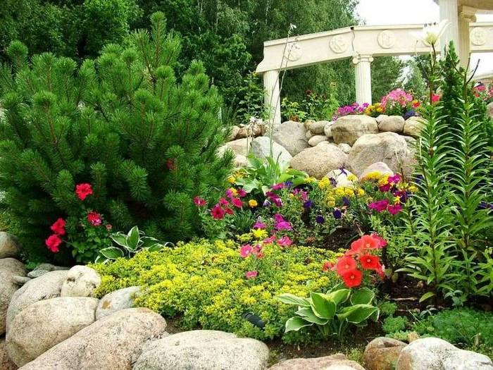 Альпийская горка и рокарий на садовом участке.
