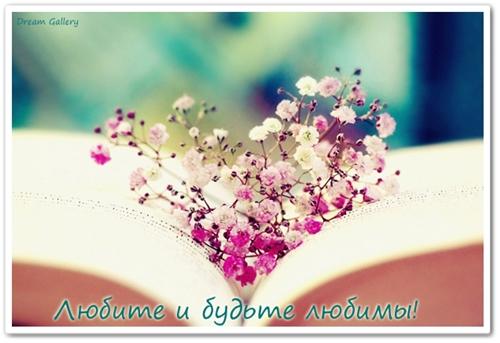 3303834_love (500x343, 122Kb)