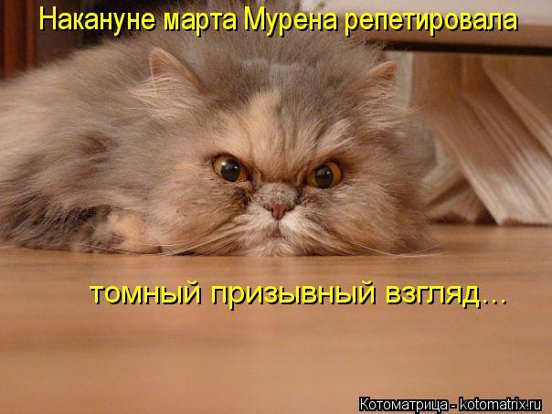 kotomatritsa_Ah (604x453, 43Kb)