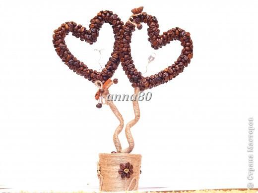 кофейное деревце сердце (12) (520x390, 34Kb)
