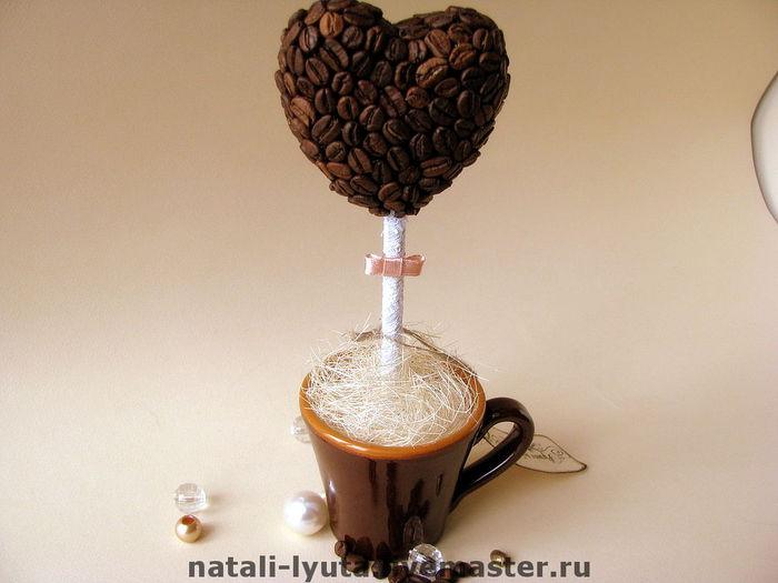 кофейное деревце сердце (23) (700x525, 42Kb)