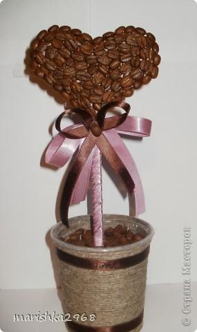 кофейное деревце валентинка (25) (285x480, 32Kb)