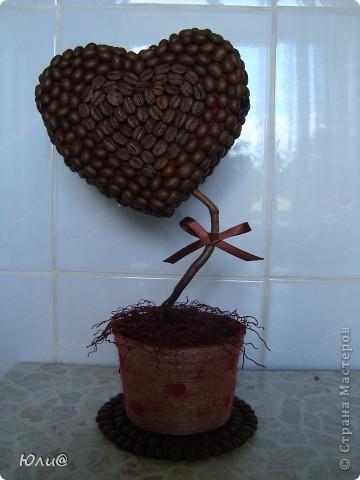 кофейное деревце валентинка (95) (360x480, 37Kb)