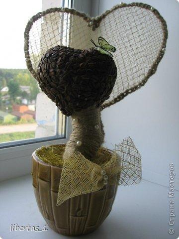 кофейное деревце валентинка (103) (360x480, 34Kb)