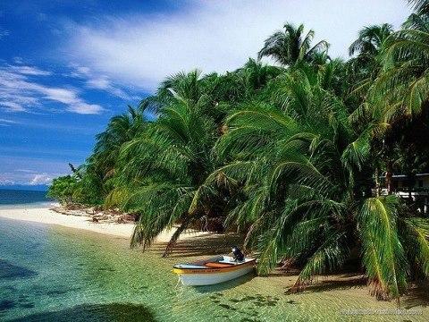 о. Бокас дель торро, Панама (480x360, 63Kb)