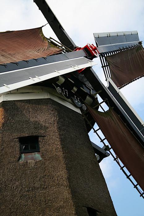 Фрисландия - часть 1. 66529