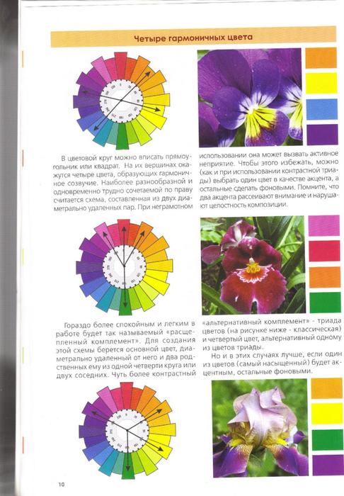 Альтернативное цветов