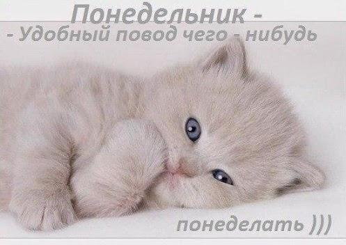 1361191561_Ponedel_nik (497x352, 46Kb)