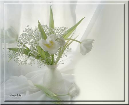 Букет-белых-тюльпанов (450x369, 171Kb)