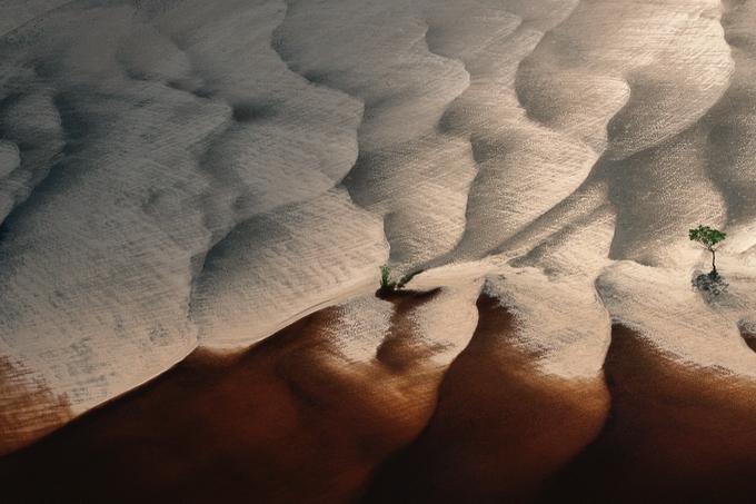 Яна Артюс–Бертран фото 11 (680x453, 252Kb)