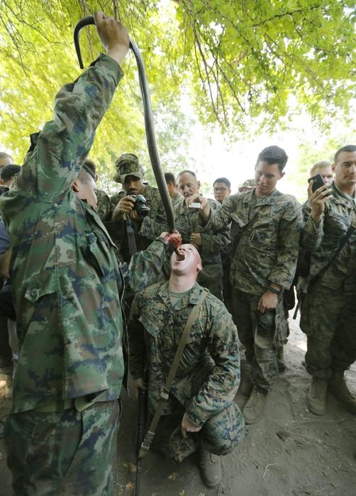 Американские солдаты пьют кровь кобры на учениях Фотографии