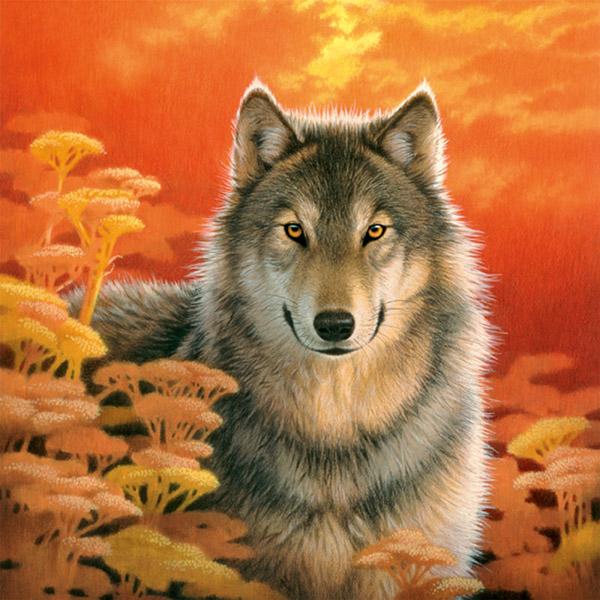 Волк на закате (Kustom Krafts) .
