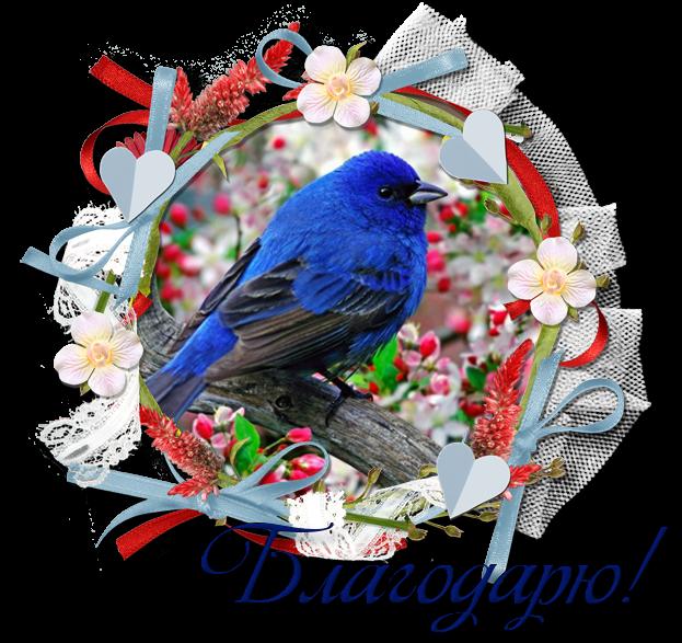 75996315_Blagodaryushka3 (623x587, 608Kb)
