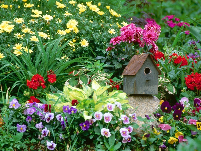 Цветы. для сада+схемы красивых цветников.  Прочитать целикомВ.