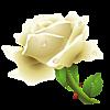 0_851cb_25298b14_XS (100x100, 12Kb)