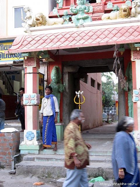 Индия, Тируваннамалай, люди, 20 (480x640, 276Kb)