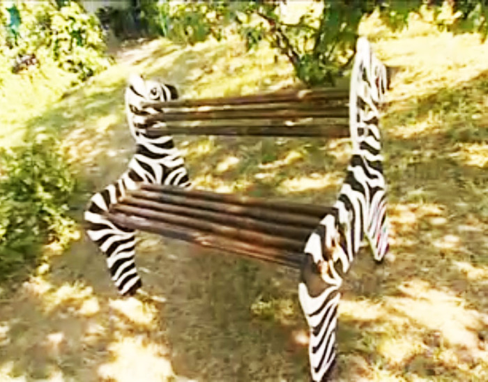 zebra skameika2 (700x548, 148Kb)