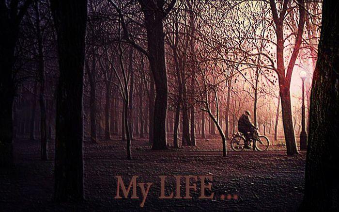 1089032_My_LIFE (700x437, 75Kb)