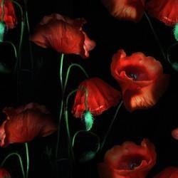 flor (39) (250x250, 14Kb)