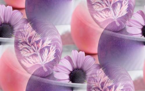 flor (117) (500x313, 40Kb)