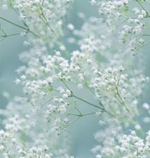 flor (34) (213x225, 43Kb)