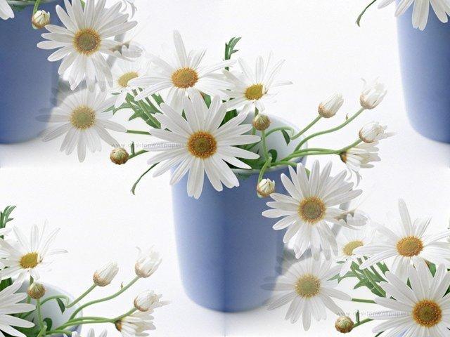 flor (207) (640x480, 53Kb)