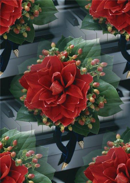 flor (105) (454x640, 60Kb)