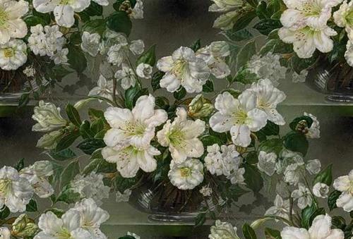 flor (129) (500x339, 67Kb)