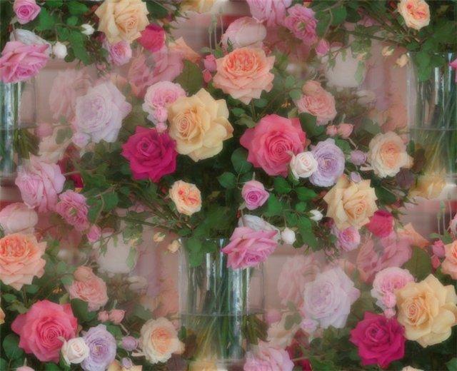 flor (227) (640x520, 69Kb)