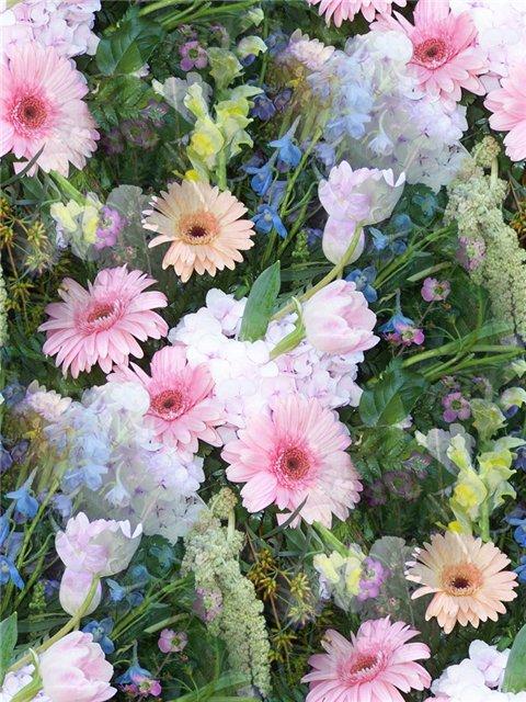 flor (112) (480x640, 104Kb)