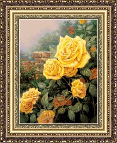 Перфектни жълти рози (377x461, 50Kb)