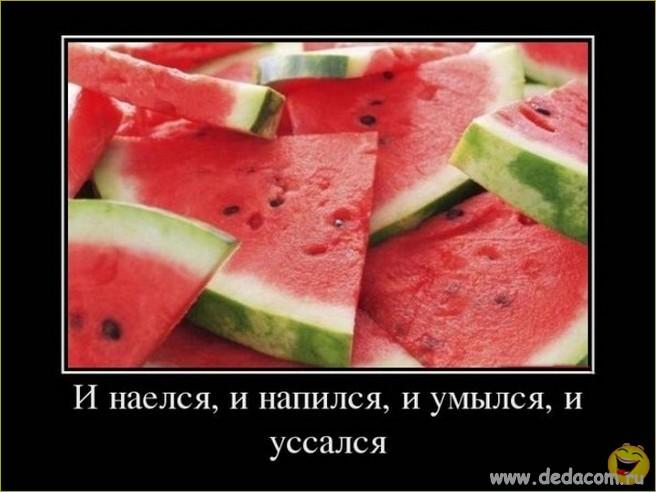 Imagea00012 (656x492, 63Kb)