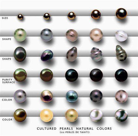 BLACK PEARL classification (470x461, 33Kb)