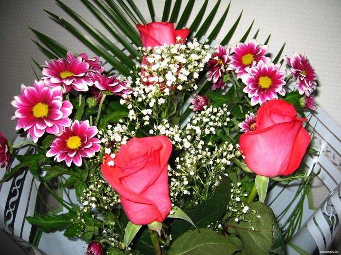 Фото букетов цветов для девушки